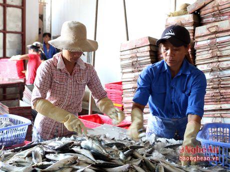 Thi tieng Han cho lao dong ngu nghiep: Neu vi pham se cam thi trong 2 nam - Anh 2