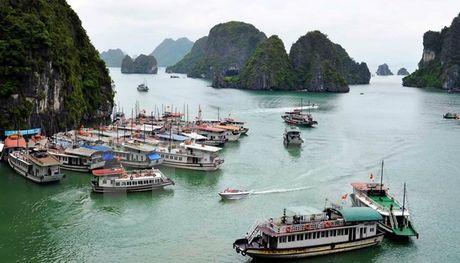 Quang Ninh dinh chi tau vi pham hoat dong tren Vinh Ha Long - Anh 1