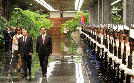 Chu tich nuoc Tran Dai Quang hoi dam voi Chu tich Cuba Raul Castro - Anh 1
