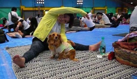 Ky luc tap yoga cung cun cung tai Nhat Ban - Anh 6