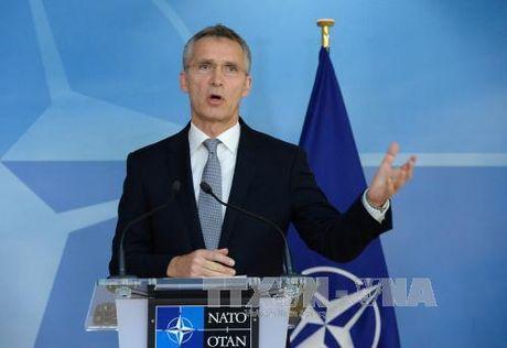 NATO tin tuong ong Trump se dan dat tot lien minh - Anh 1