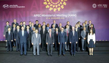 Pho Thu tuong Pham Binh Minh: APEC can tiep tuc the hien vai tro la dong luc cua tang truong - Anh 1