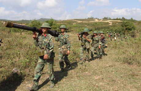 Can canh bo binh, khong quan Viet Nam ban chien dau - Anh 3