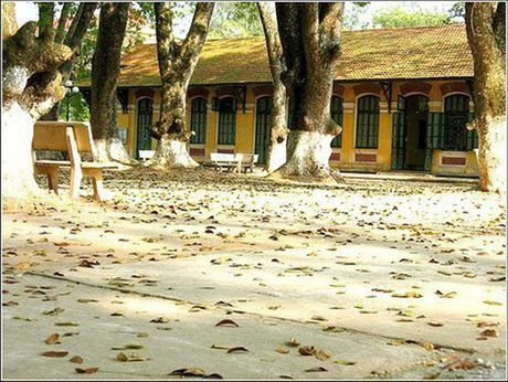Nhung ngoi truong mang dam dau an thoi gian o Ha Noi - Anh 3