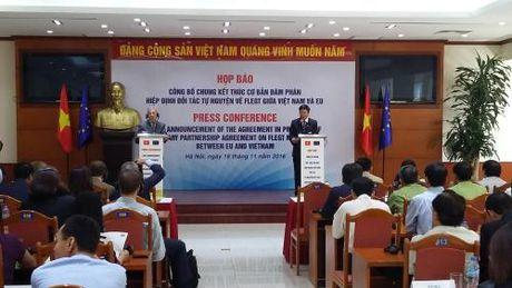 'Giay thong hanh' cho go Viet Nam vao EU - Anh 1