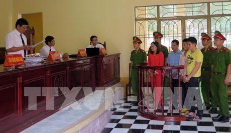 Quang Nam: Tuyen phat cac bi cao trong vu khai thac vang trai phep lam 4 nguoi chet - Anh 1