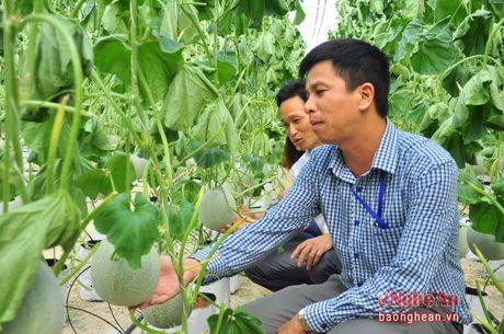 Xa Hoi Son (Anh Son): Chu trong cai thien doi song nhan dan - Anh 2