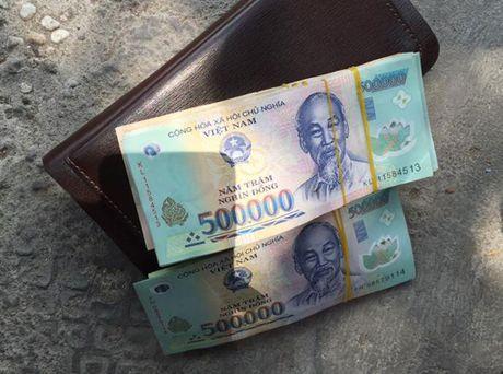 Tai xe taxi tra lai 100 trieu dong cho khach Viet kieu de quen - Anh 1