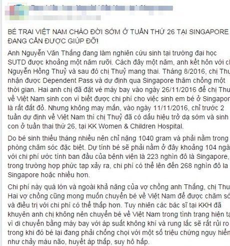 Tien sy Viet keu goi giup do 4 ty cuu con trai o Singapore - Anh 2