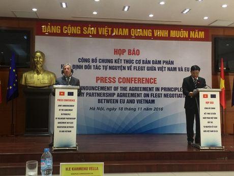 Viet Nam-EU dat thoa thuan ve Hiep dinh Doi tac Tu nguyen (VPA) - Anh 1