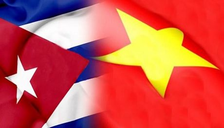Khai mac ky hop thu 34 Uy ban lien chinh phu Viet Nam-Cuba - Anh 1