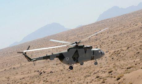 Lau Nam Goc muon ngung mua truc thang Mi-17 cua Nga - Anh 1