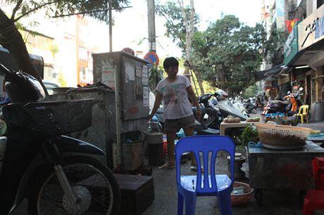 Rung minh muu sinh duoi chan tram bien ap, cot dien cao the - Anh 1