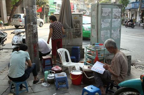 Rung minh muu sinh duoi chan tram bien ap, cot dien cao the - Anh 4
