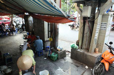 Rung minh muu sinh duoi chan tram bien ap, cot dien cao the - Anh 6