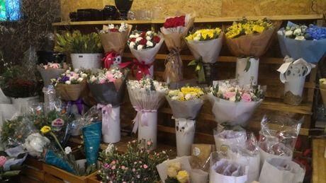 Thi truong hoa chuc mung 20.11: Hoa huong duong, hoa hong len ngoi - Anh 4