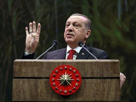Erdogan co the giu chuc Tong thong Tho Nhi Ky den nam 2029 - Anh 1