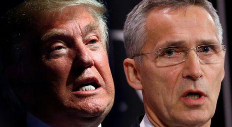 Ong Donald Trump tran an NATO - Anh 1