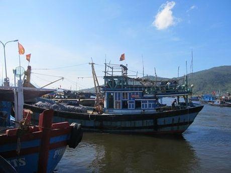 Thanh Hoa: Phat hoang khi thay thi the khong dau troi tren bien - Anh 1