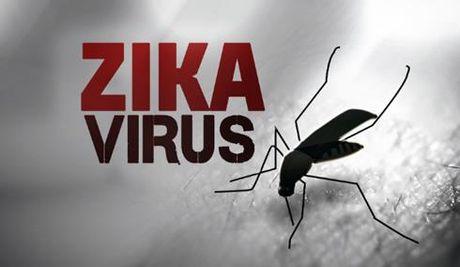 Virus Zika dang lay lan nhanh o TPHCM - Anh 1