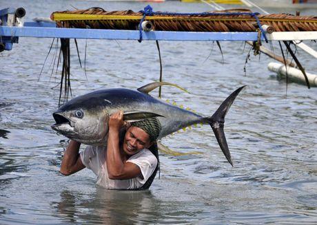 Trung Quoc 'cho phep' ngu dan Philippines vao bai can Scarborough - Anh 2