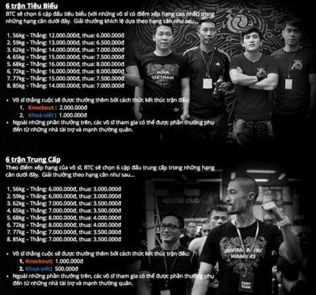 So VH&TT Khanh Hoa: Se xu ly nghiem neu Johnny Tri Nguyen to chuc thi dau MMA - Anh 1
