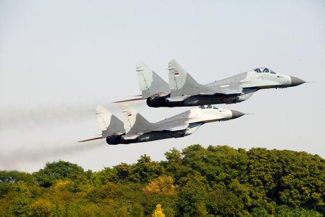 Nga cho Serbia 6 tiem kich MiG-29 voi dieu kien gi? - Anh 9