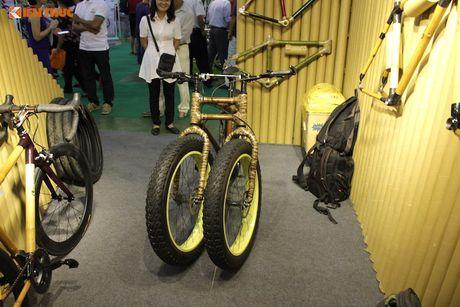 Can canh xe dap tre 3 banh hang khung 'made in Vietnam' - Anh 8