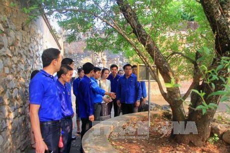 Tao dieu kien cho can bo doan qua tuoi luan chuyen cong tac - Anh 1