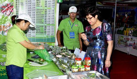 192 DN tham gia Hoi cho hang Viet Nam TP Ha Noi nam 2016 - Anh 2