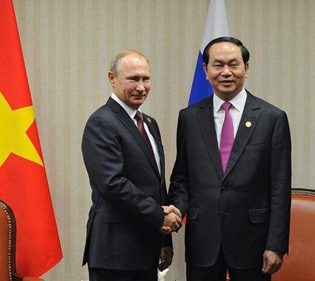 Chu tich nuoc Tran Dai Quang moi ong Putin tham Viet Nam - Anh 1