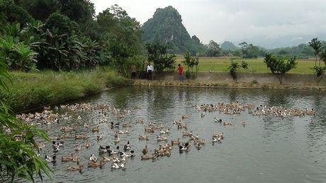 Lang Pha - diem sang khu dan cu song van hoa - Anh 1