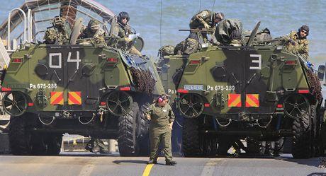 Hang tram linh NATO tap dan tran chien dau sat suon Nga - Anh 1