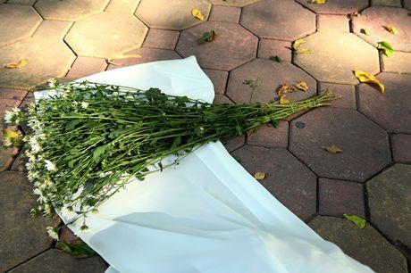 Chum anh: Cuc hoa mi diu dang xuong pho - Anh 13