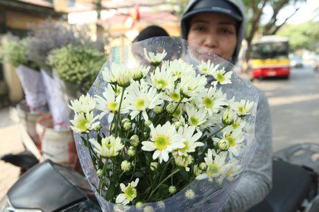 Chum anh: Cuc hoa mi diu dang xuong pho - Anh 8