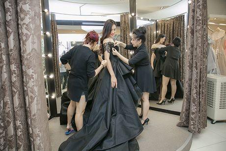 Dieu Ngoc di chon vay da hoi chuan bi thi Miss World - Anh 3