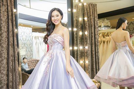 Dieu Ngoc di chon vay da hoi chuan bi thi Miss World - Anh 6