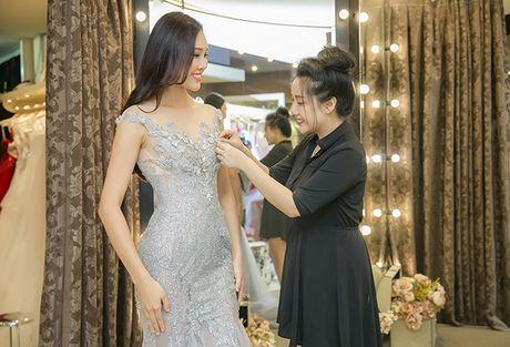 Dieu Ngoc di chon vay da hoi chuan bi thi Miss World - Anh 9
