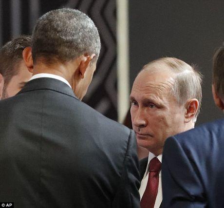 Obama va Putin trao nhau cai bat tay 'lanh nhat' nhat lich su - Anh 2