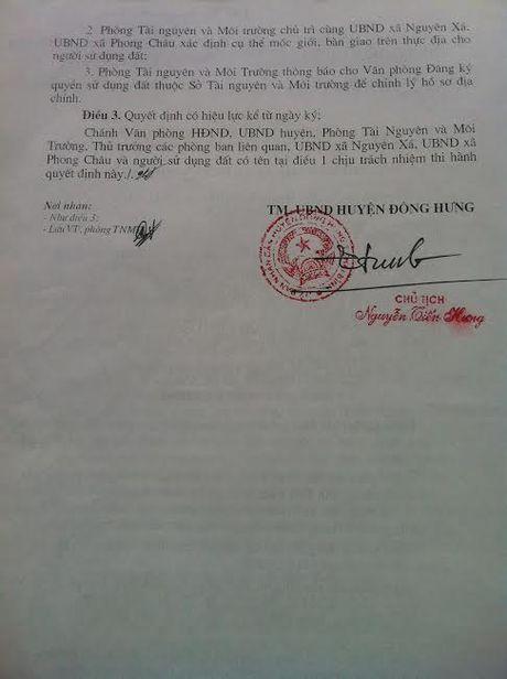 Thai Binh: Biet thu be the van ngang nhien ton tai tren dat kinh doanh phi nong nghiep - Anh 3