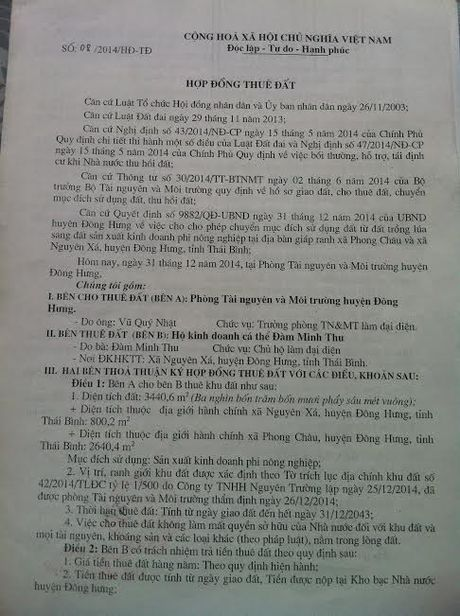 Thai Binh: Biet thu be the van ngang nhien ton tai tren dat kinh doanh phi nong nghiep - Anh 4