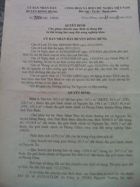Thai Binh: Biet thu be the van ngang nhien ton tai tren dat kinh doanh phi nong nghiep - Anh 5