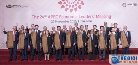 Viet Nam du Tuan le cap cao APEC Peru voi mot 'vi the dac biet' - Anh 2