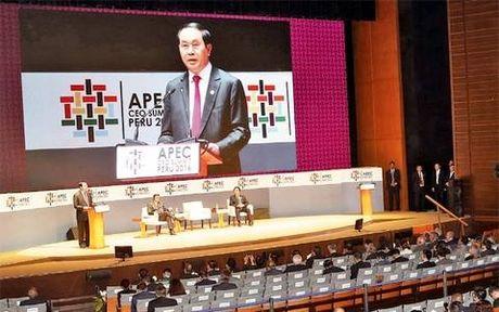 Viet Nam se la chu nha cua Hoi nghi Thuong dinh APEC 2017 - Anh 1