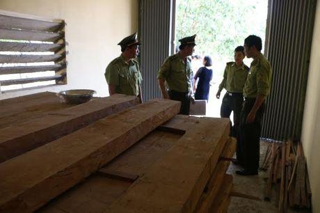 Quang Binh: Giam doc so tru go lau o co quan - Anh 1