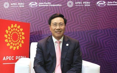 Ky vong lon doi voi Nam APEC 2017 duoc to chuc tai Viet Nam - Anh 1