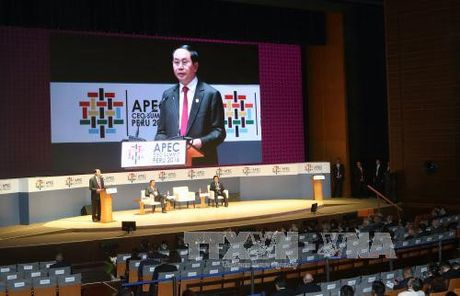 Toan canh Chu tich nuoc du Hoi nghi cap cao APEC 2016 tai Peru - Anh 19