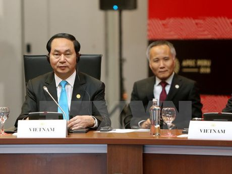 Toan canh Chu tich nuoc du Hoi nghi cap cao APEC 2016 tai Peru - Anh 21