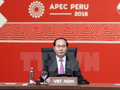 Toan canh Chu tich nuoc du Hoi nghi cap cao APEC 2016 tai Peru - Anh 23