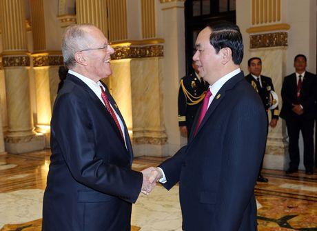 Toan canh Chu tich nuoc du Hoi nghi cap cao APEC 2016 tai Peru - Anh 7